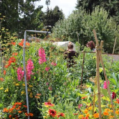 about-garden2-900a