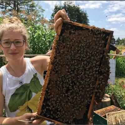 bees-frame