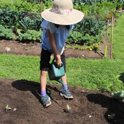 garden-Zena-watering