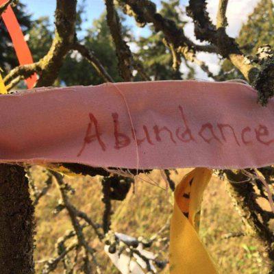 wish-abundance-900