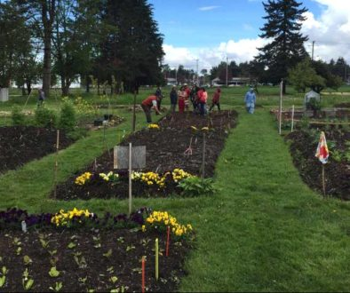 garden-may2-1165-665