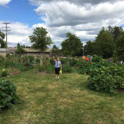 picking-vegies-1