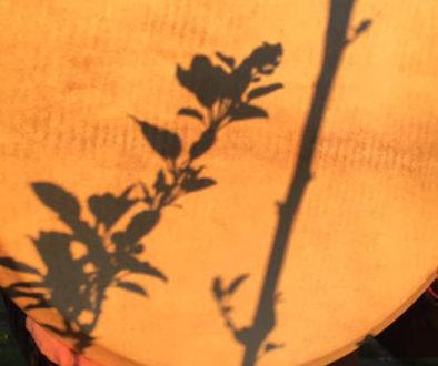 drum-sun-1165-665
